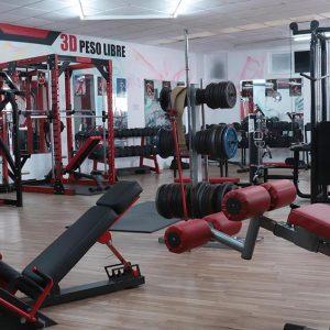 maquinas musculación gimnasio 3dvalencia